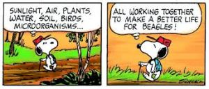 snoopy-working tog