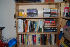 bookshevles3